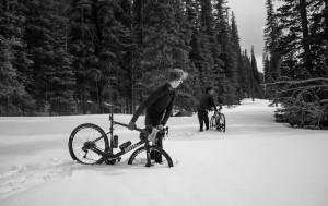 Phinney e Morton Immersi nella neve